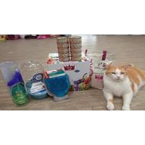 ☆國際貓家,貓咪生活必需品特惠組合☆貓奴組合,貓咪吃喝玩樂組限省近千元!!