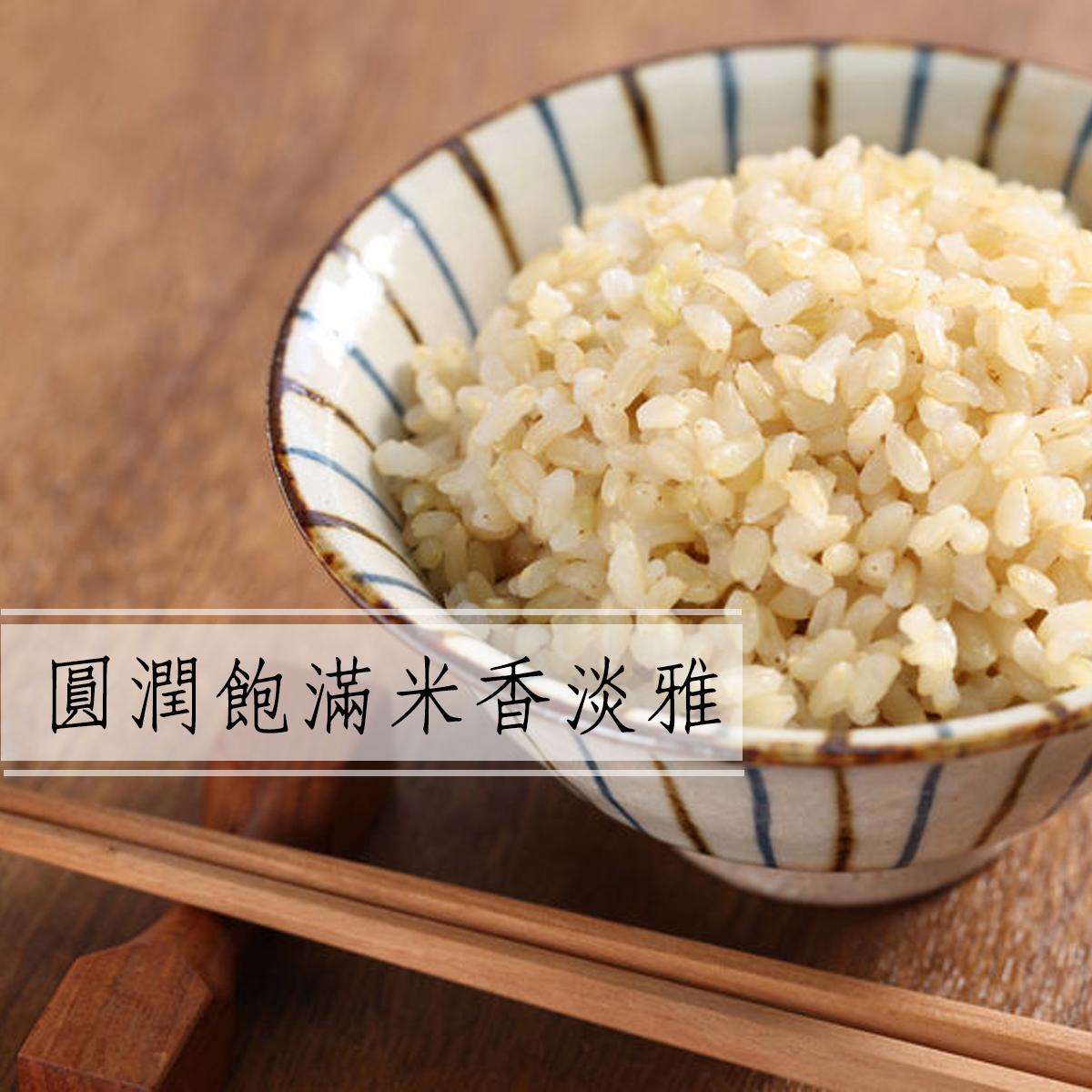 胚芽米,軟糙米