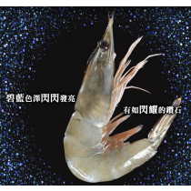 【臻美蔬果】頂級藍鑽蝦 2盒免運團購組