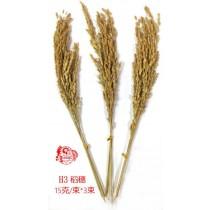 花材花圈稻穗H3