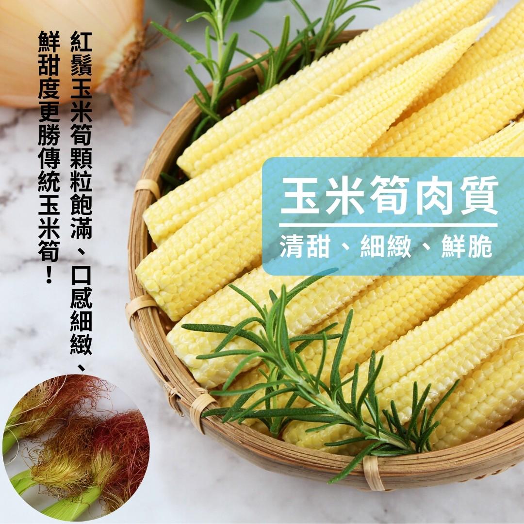 玉米筍肉質
